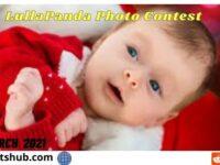 www.lullapanda.com